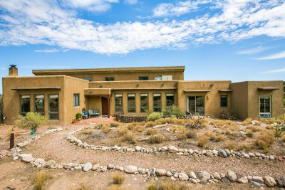 Placitas Single Family Home For Sale: 1 Anasazi Road
