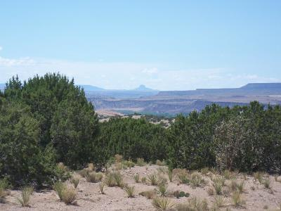 Placitas Residential Lots & Land For Sale: Palomar Rd - Lot 23