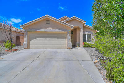 Albuquerque Single Family Home For Sale: 4959 Story Rock Street NW