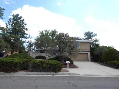Single Family Home For Sale: 6708 Hildegarde Drive NE