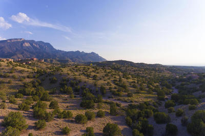Placitas Residential Lots & Land For Sale: 17 Pine Road