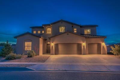 rio rancho Single Family Home For Sale: 2613 La Luz Circle NE