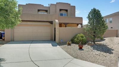 Albuquerque Single Family Home For Sale: 3928 Desert Sage Court NW