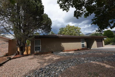 Albuquerque Single Family Home For Sale: 11705 Holiday Avenue NE