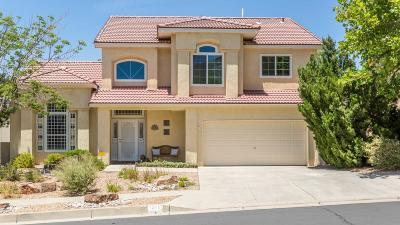 Albuquerque Single Family Home For Sale: 1325 White Rim Place NE