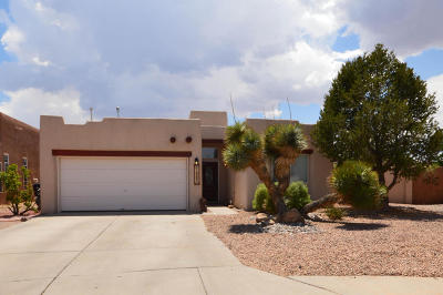 Albuquerque Single Family Home For Sale: 10243 Sand Sage Drive NW