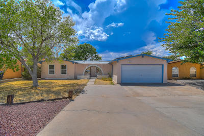 Albuquerque Single Family Home For Sale: 7209 Oralee Street NE