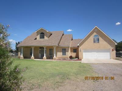 Albuquerque Single Family Home For Sale: 7000 Arrington Road SW