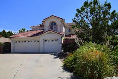 Albuquerque Single Family Home For Sale: 8108 Rancho Lago Court NW
