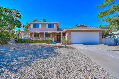 Albuquerque Single Family Home For Sale: 9200 Lagrima De Oro Road NE