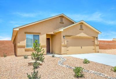 Albuquerque Single Family Home For Sale: 9909 Sacate Blanco Avenue SW