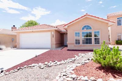 Albuquerque Single Family Home For Sale: 4517 Alpine Circle SE