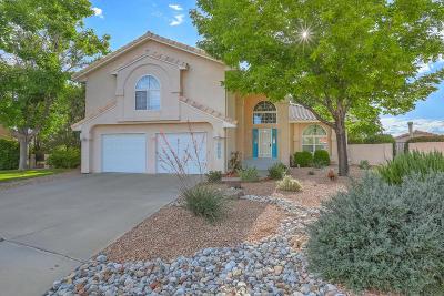 Albuquerque Single Family Home For Sale: 5609 Brockton Court NE