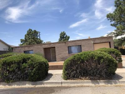 Albuquerque Single Family Home For Sale: 10225 Paseo Del Norte NW