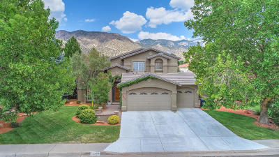 Albuquerque Single Family Home For Sale: 1604 Blair Drive NE