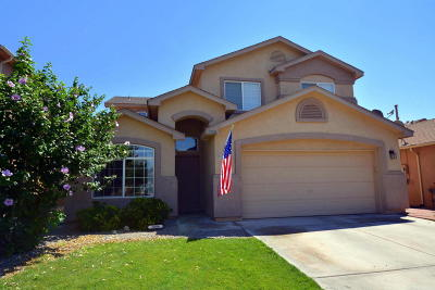 Single Family Home For Sale: 3806 Desert Pinon Drive NE