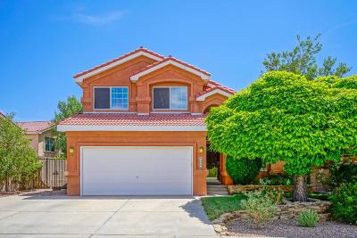 Albuquerque NM Single Family Home For Sale: $213,900