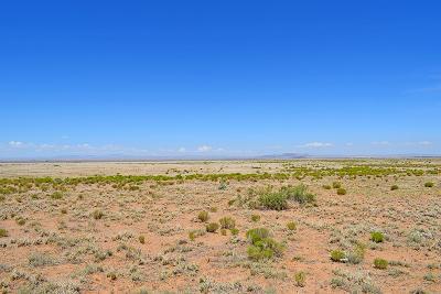 Valencia County Residential Lots & Land For Sale: Lot 203 Rancho Rio Grande #16E