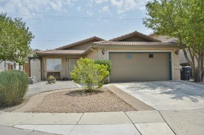 Albuquerque Single Family Home For Sale: 8924 Olivine Street NE