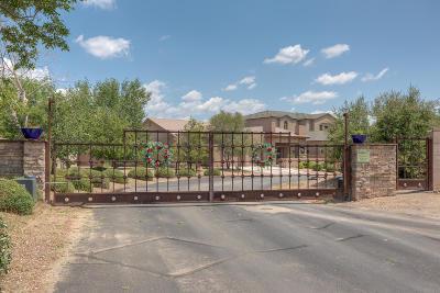 Los Ranchos Single Family Home For Sale: 335 Nuevo Hacienda Lane NW