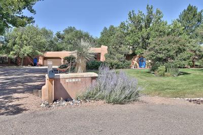 Albuquerque Single Family Home For Sale: 10103 Rio Del Norte Court NW
