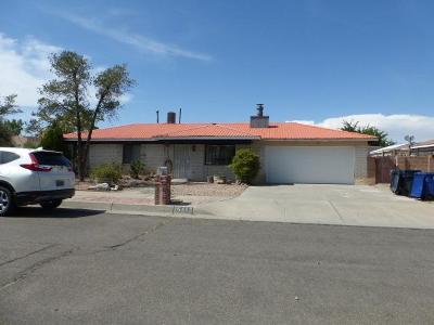 Albuquerque Single Family Home For Sale: 5413 Vista Cielo Avenue NW