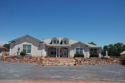 Valencia County Single Family Home For Sale: 590 Barnett Drive