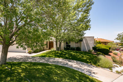 Single Family Home For Sale: 4929 Camino De Monte NE