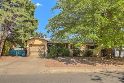 Albuquerque Single Family Home For Sale: 2920 Arizona Street NE