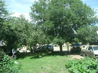 Albuquerque Single Family Home For Sale: 3140 Wilkinson Road SW