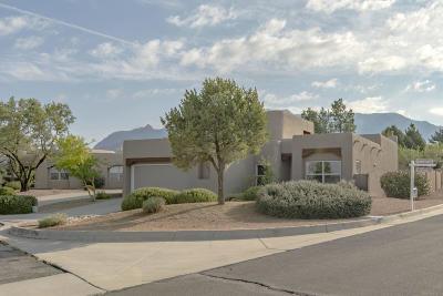 Albuquerque Single Family Home For Sale: 12715 Desert Sky Avenue NE