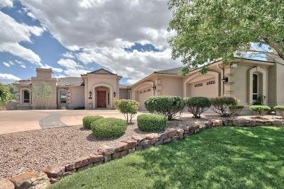 Albuquerque Single Family Home For Sale: 11508 Beringer Avenue NE