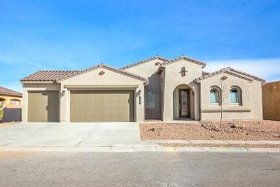 Rio Rancho Single Family Home For Sale: 1827 Truchas Peak Trail NE