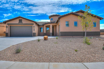 Rio Rancho Single Family Home For Sale: 5716 Pikes Peak Loop NE