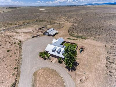 Tijeras, Cedar Crest, Sandia Park, Edgewood, Moriarty, Stanley Single Family Home For Sale: 206 Montoya Road