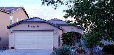 Rio Rancho Single Family Home For Sale: 3414 Marino Drive
