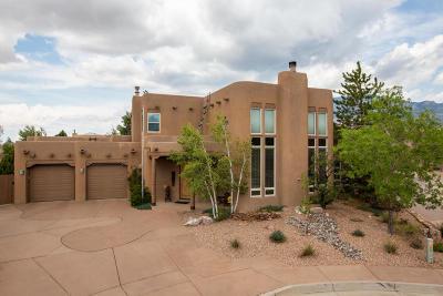 Albuquerque Single Family Home For Sale: 13219 Canyon Edge Trail NE