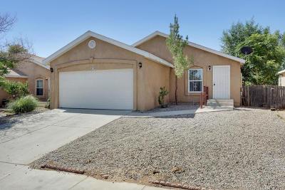 Albuquerque Single Family Home For Sale: 8838 Odin Road SW