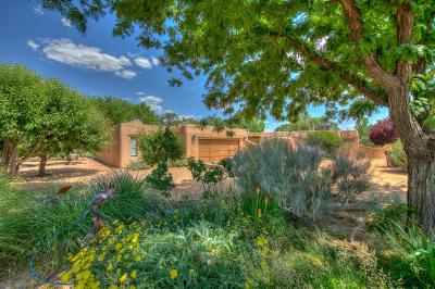 Albuquerque Single Family Home For Sale: 10110 Rio Del Norte Court NW