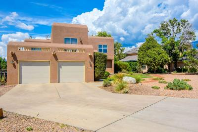 Albuquerque Single Family Home For Sale: 8525 Vineyard Ridge Road NE