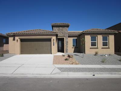 Albuquerque NM Single Family Home For Sale: $369,420