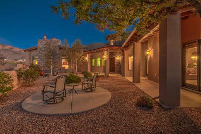 Albuquerque Single Family Home For Sale: 7720 Elena Avenue NE
