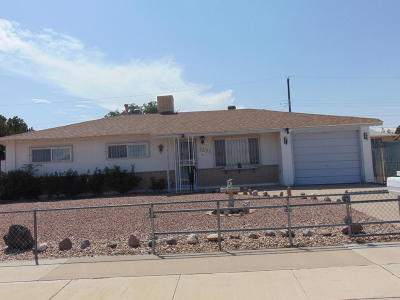 Albuquerque Single Family Home For Sale: 1131 Carla Street SW