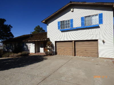 Single Family Home For Sale: 1200 Stagecoach Road SE