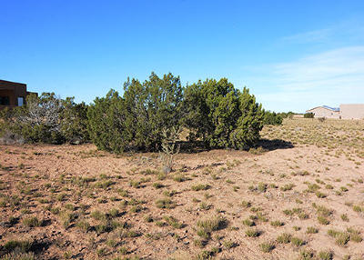 Placitas Residential Lots & Land For Sale: 5 Horseshoe Loop