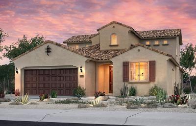 Rio Rancho Single Family Home For Sale: 7030 Overview Road NE