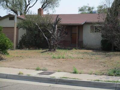Albuquerque Single Family Home For Sale: 2032 Palomas Drive NE