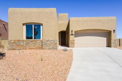 Rio Rancho Single Family Home For Sale: 2627 Santa Fe Vista Road NE