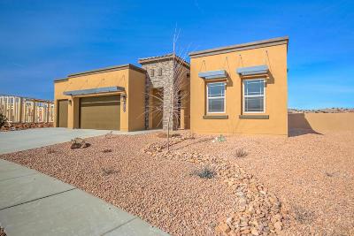 Rio Rancho Single Family Home For Sale: 1811 Truchas Peak Trail NE