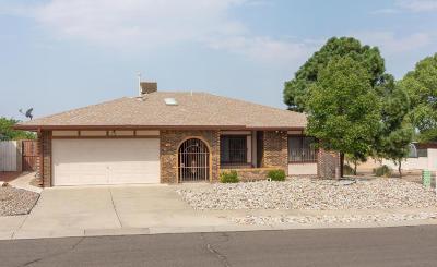 Single Family Home For Sale: 5405 Vista Bonita NE